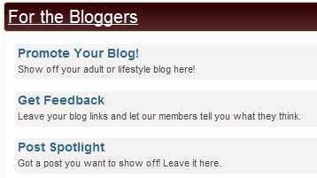 For the Bloggers Forum - Promotion Options